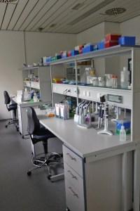 DNA Labor L.Krogmann