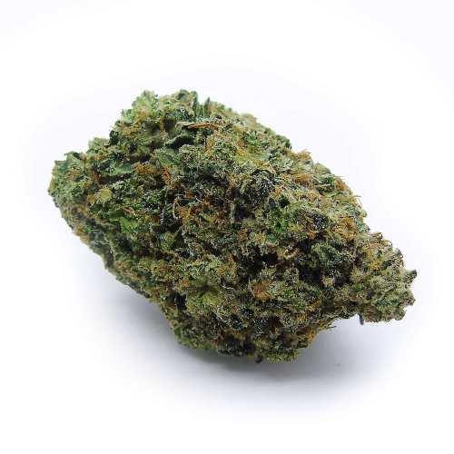 Rockstar Tuna Cannabis Strain - London Ontario