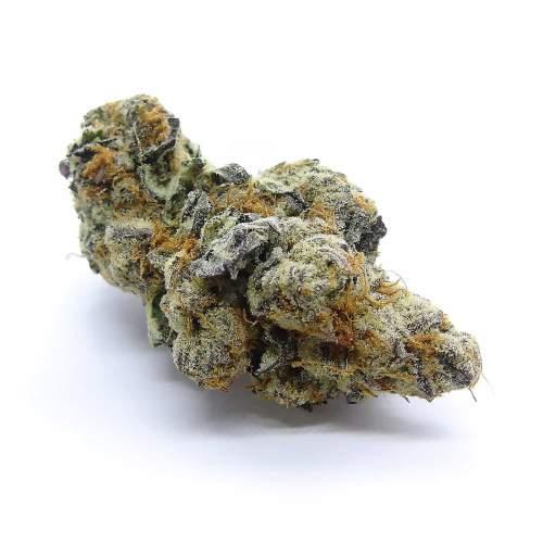 Purple Drank Breath Cannabis Strain London Ontario