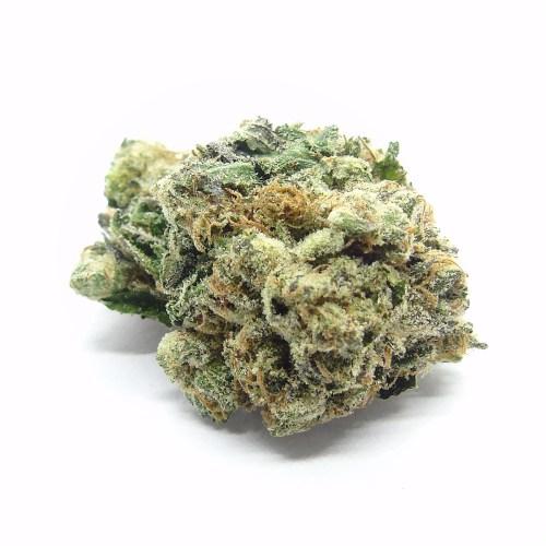 Black Tuna Cannabis Strain - Weed Delivery London Ontario