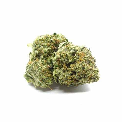 Tuna Kush Cannabis Strain - Weed Delivery London