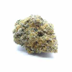 Dos-Si-Dos Cannabis Strain - Weed Delivery London