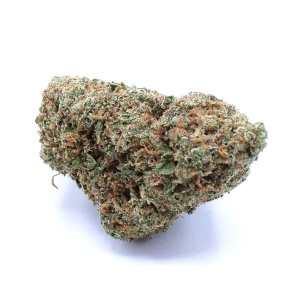 China Yunnan Cannabis Strain