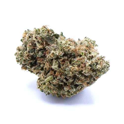SinMint Cookies Cannabis Strain