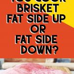 uncooked brisket