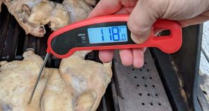 Lavatools Javelin Pro Duo taking temperature of chicken on grill
