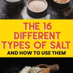 the 16 different types of salt