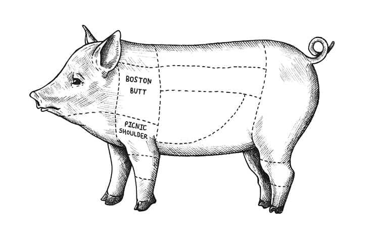 boston butt vs pork shoulder