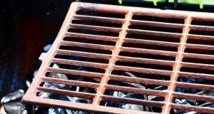 rusty grill grate