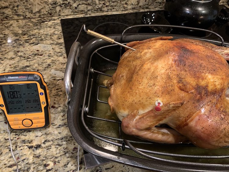 cooked turkey with ThermoPro TP27 temperature probe