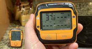ThermoPro TP27 review