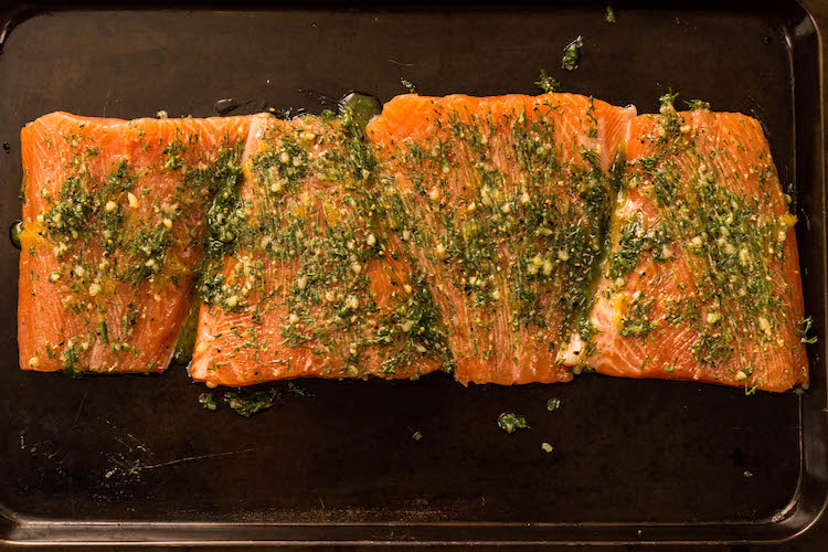 salmon fillets covered in seasoning on a metal tray
