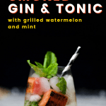 smoked cocktails - gin and tonic