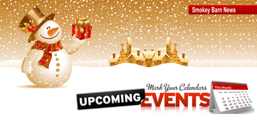 """2020 Christmas Parades, """"Winter Wonderland"""", Light Shows, Coat Drive & Holiday Events"""