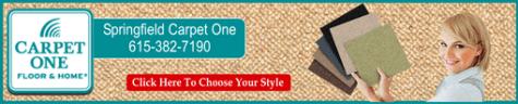 carpet decorator 511 ad