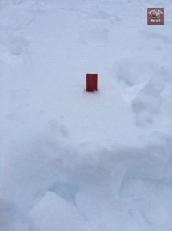 Submitted by Christina Kissy Lassiter 12 inch ruler hard to read but definitely more than 6 inches cross plains