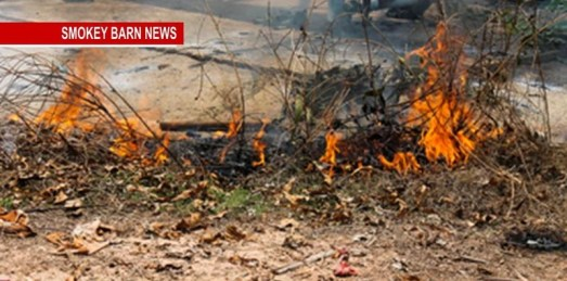 Dry Air/Wind Trigger Grass Fires: EMA Recommends Caution