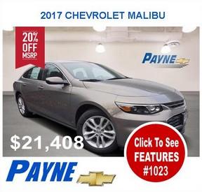 Payne malibu 1023 288x275