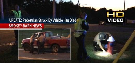Pedestrian Struck By Vehicle June 4th In Springfield Dies