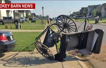 Rollover Runaway Horse And Buggy Crash