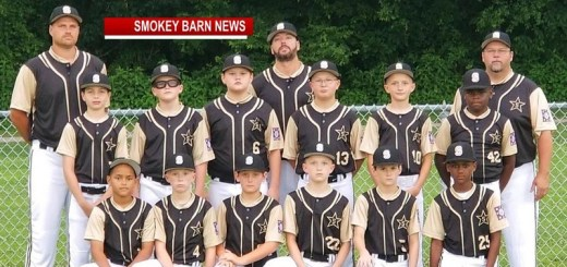 Springfield's 9/10 Dixie Youth Team Headed To The World Series