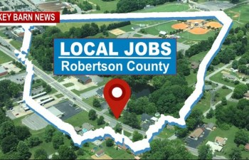 Area Top Jobs (The Local Jobs Insider)
