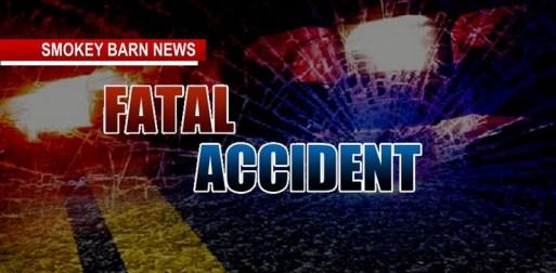 Pedestrian Killed In Early Morning Accident
