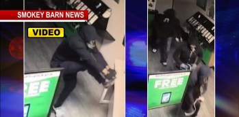 Violent Grab-N-Dash Burglary Caught On Camera In Springfield