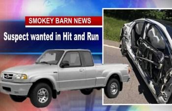 Driver Sought In Hit and Run Crash Near Cedar Hill