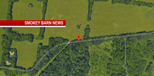 Human Remains Found Off Kennedy Rd In Clarksville