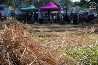 Bangalow BBQ and Bluegrass Festival 1.1