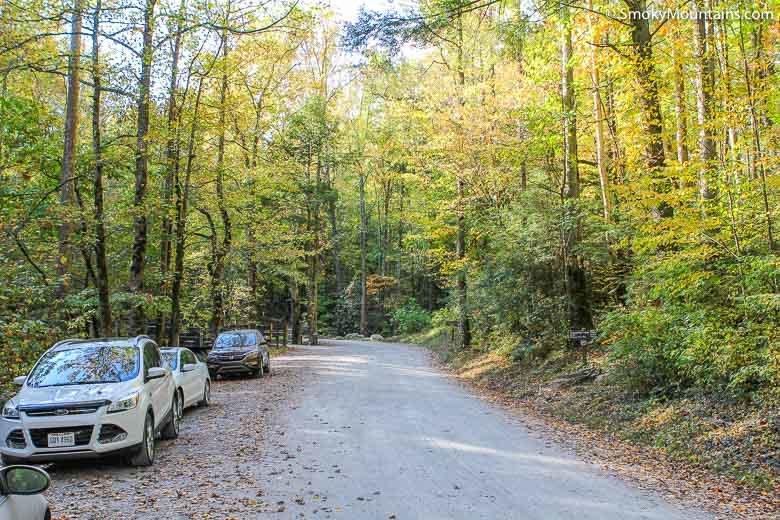 Grapeyard Ridge Trail Smokymountains Com