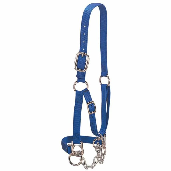 350901BL Heavy Duty Restraint Halter blue