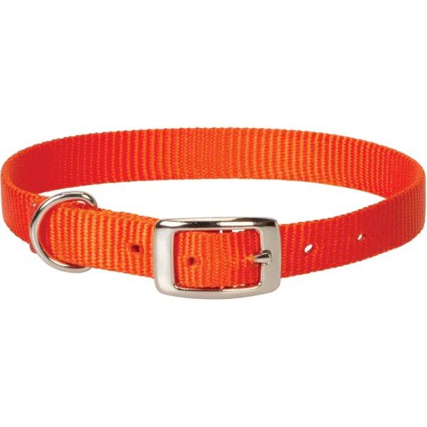 nylon goat collar orange