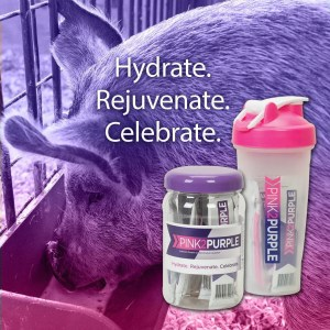 Show Pig Supplements