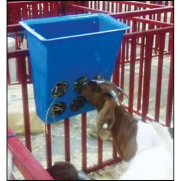sheep goat poly hay feeder basket in use