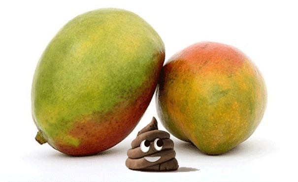mangoes as a source of fibre