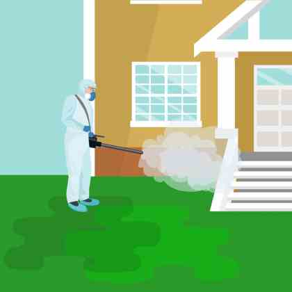 termite chemical treatment image
