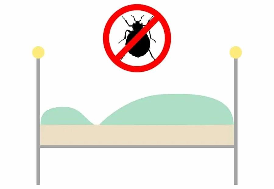 bed bug interceptor featured image