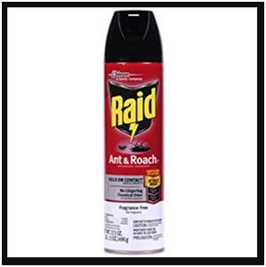 raid 11717 aerosol spray ant roach killer image