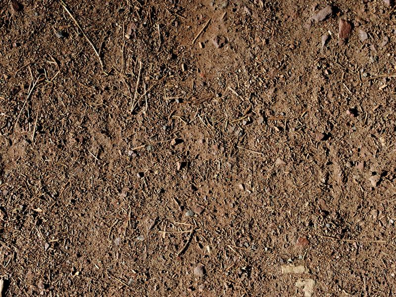 Raw Dirt