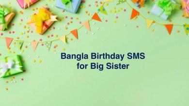 Bangla Birthday SMS for Big Sister