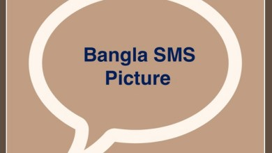 Bangla SMS Picture 2021 Bengali SMS Pic Download