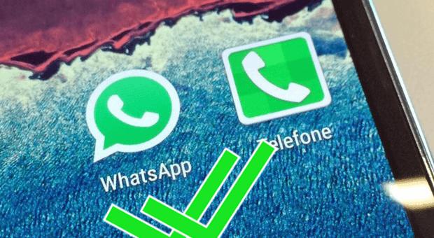 whatsapp_N8rIdtd
