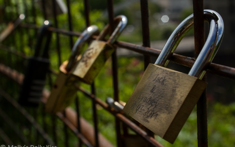 Image of lock on a fence by Molly Moore