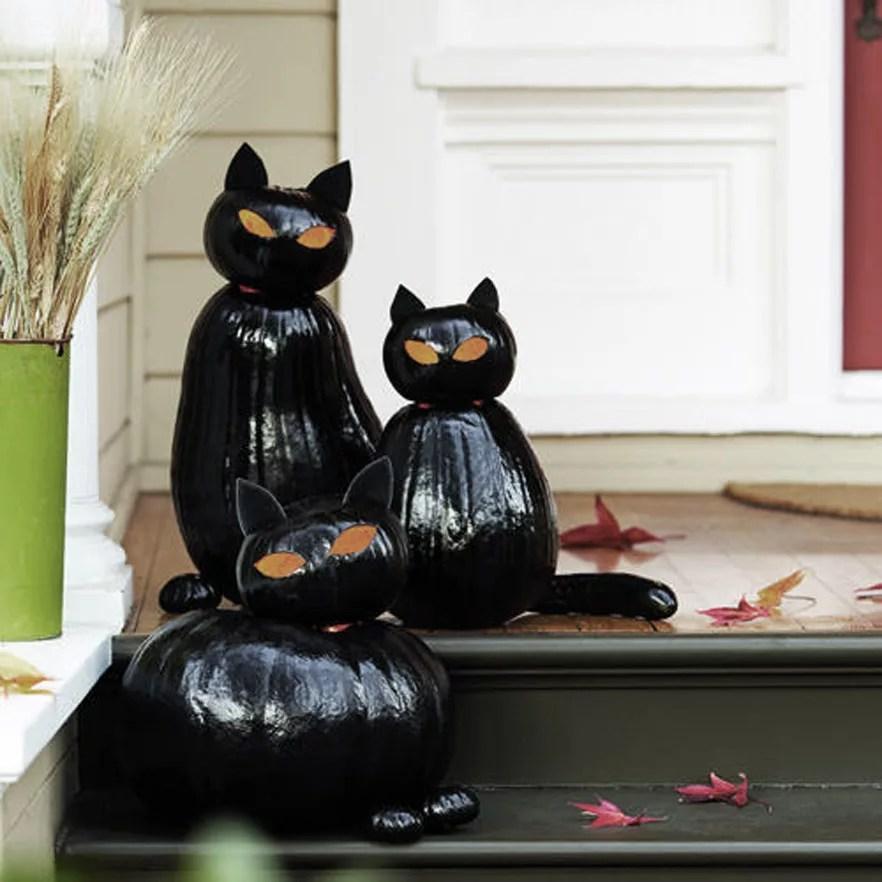 DIY gato con calabazas