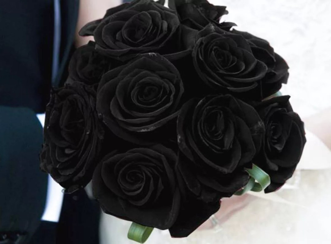 Rosa negra DIY