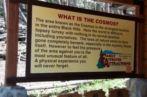 Cosmos Mystery Area