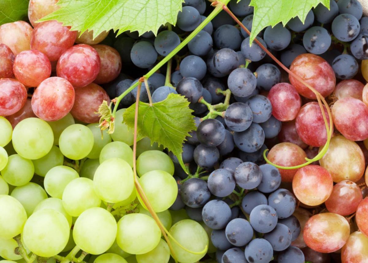 Grapes | SNAP-Ed