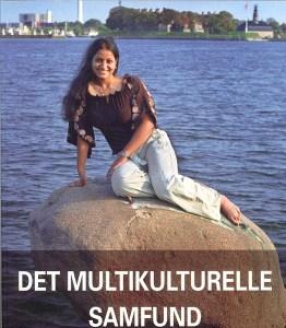 det-multikulturelle-samfund1